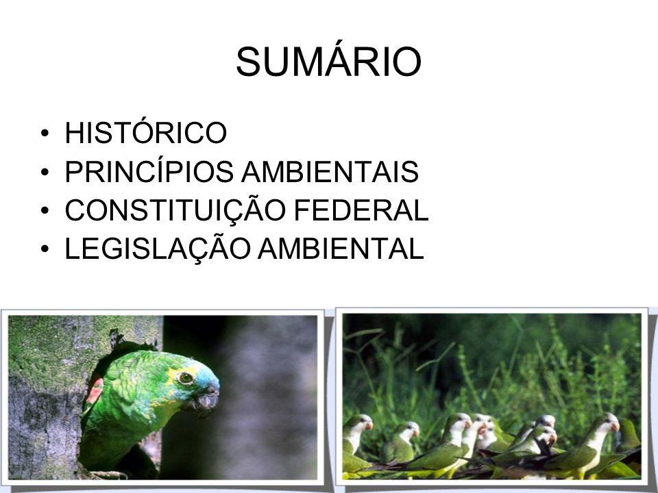 SUMÁRIO HISTÓRICO PRINCÍPIOS AMBIENTAIS CONSTITUIÇÃO FEDERAL