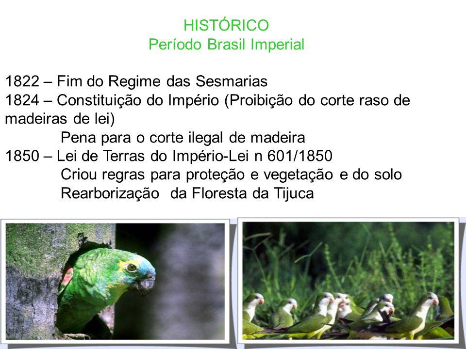 Período Brasil Imperial