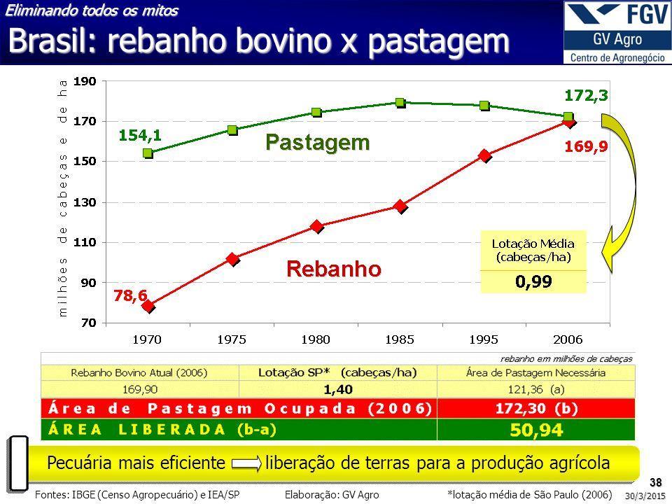 Brasil: rebanho bovino x pastagem