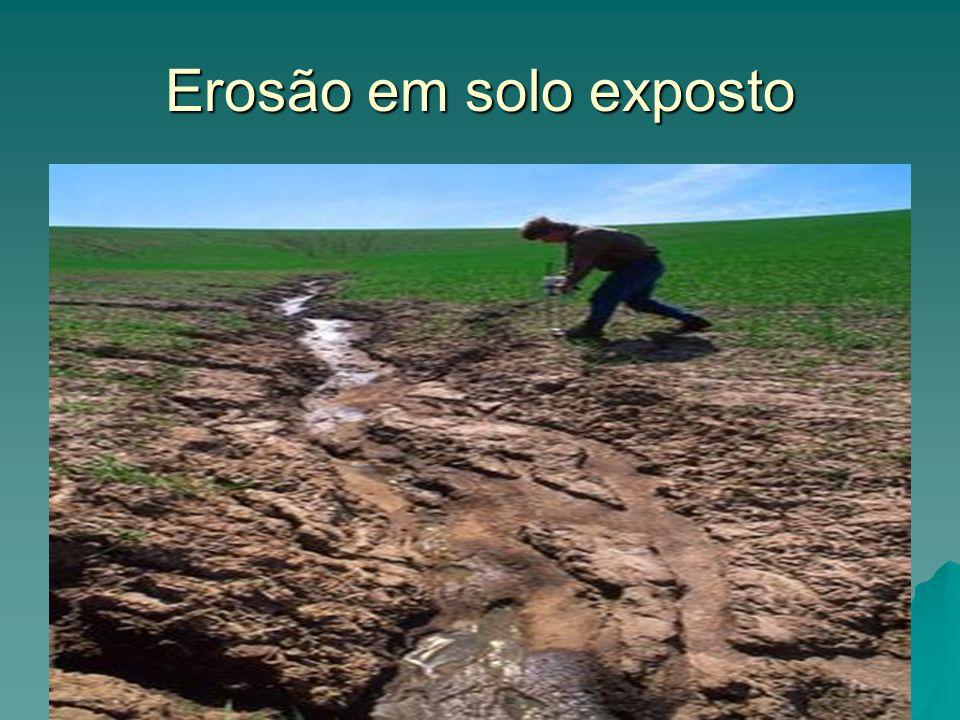 Erosão em solo exposto