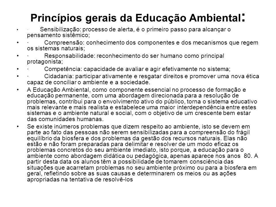 Princípios gerais da Educação Ambiental: