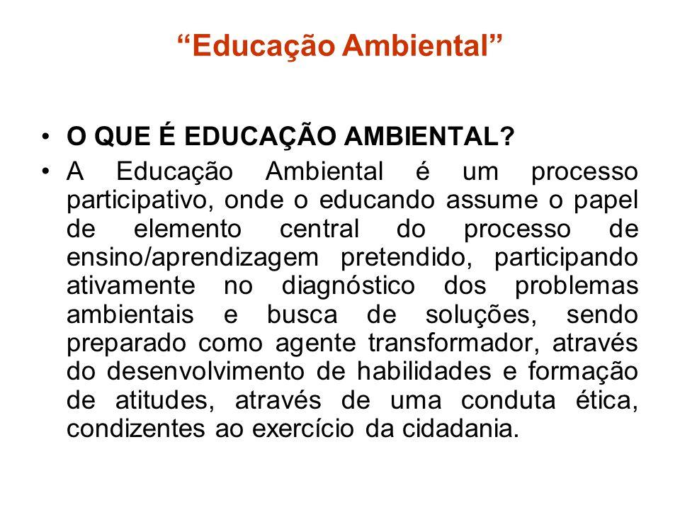Educação Ambiental O QUE É EDUCAÇÃO AMBIENTAL