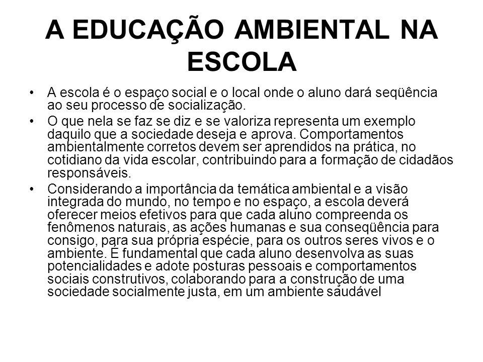 A EDUCAÇÃO AMBIENTAL NA ESCOLA