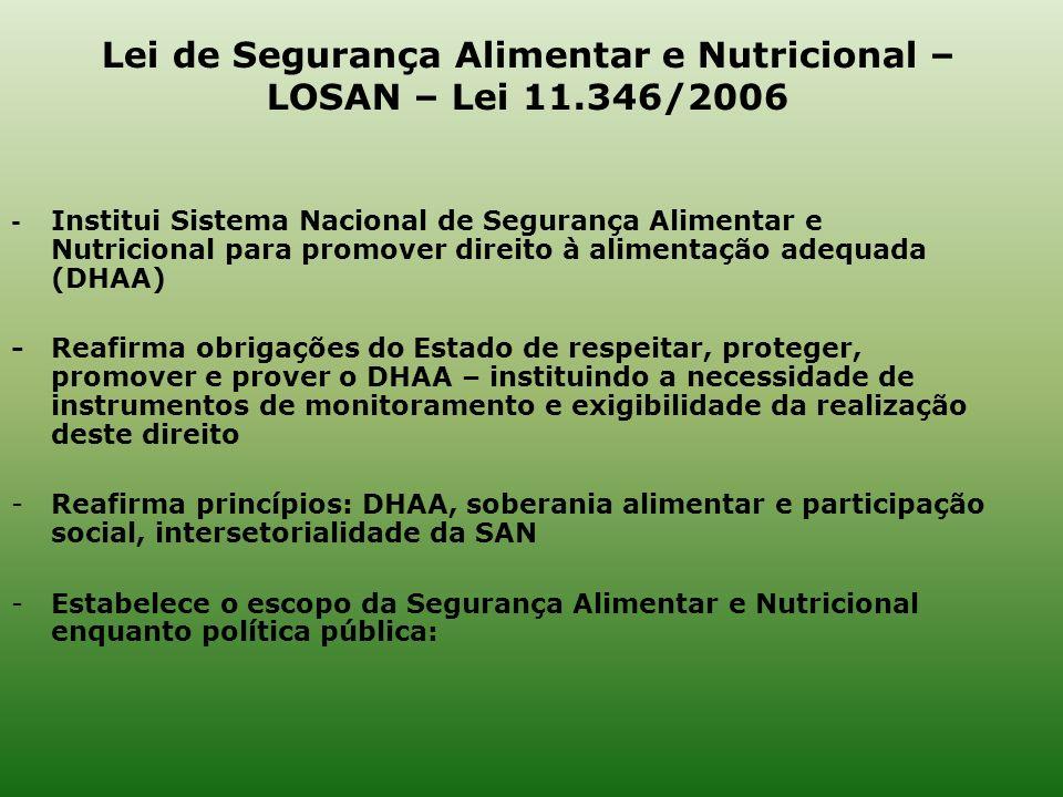 Lei de Segurança Alimentar e Nutricional – LOSAN – Lei 11.346/2006