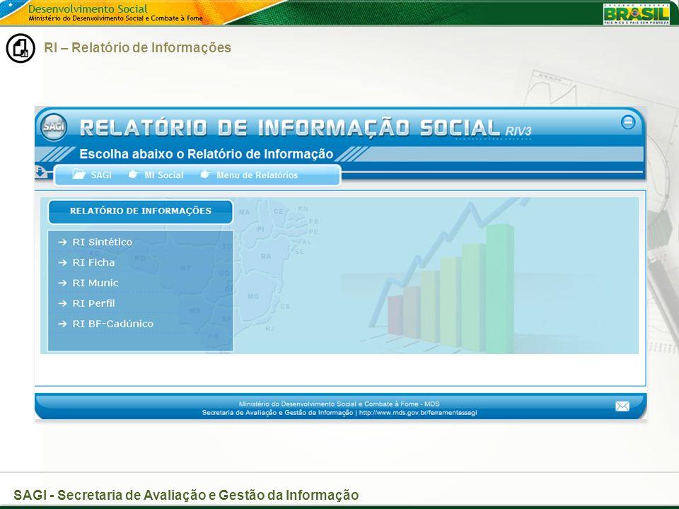 RI – Relatório de Informações