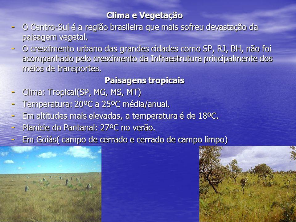 Clima e Vegetação O Centro-Sul é a região brasileira que mais sofreu devastação da paisagem vegetal.
