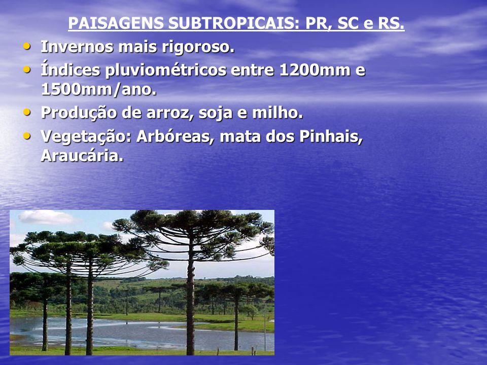PAISAGENS SUBTROPICAIS: PR, SC e RS.
