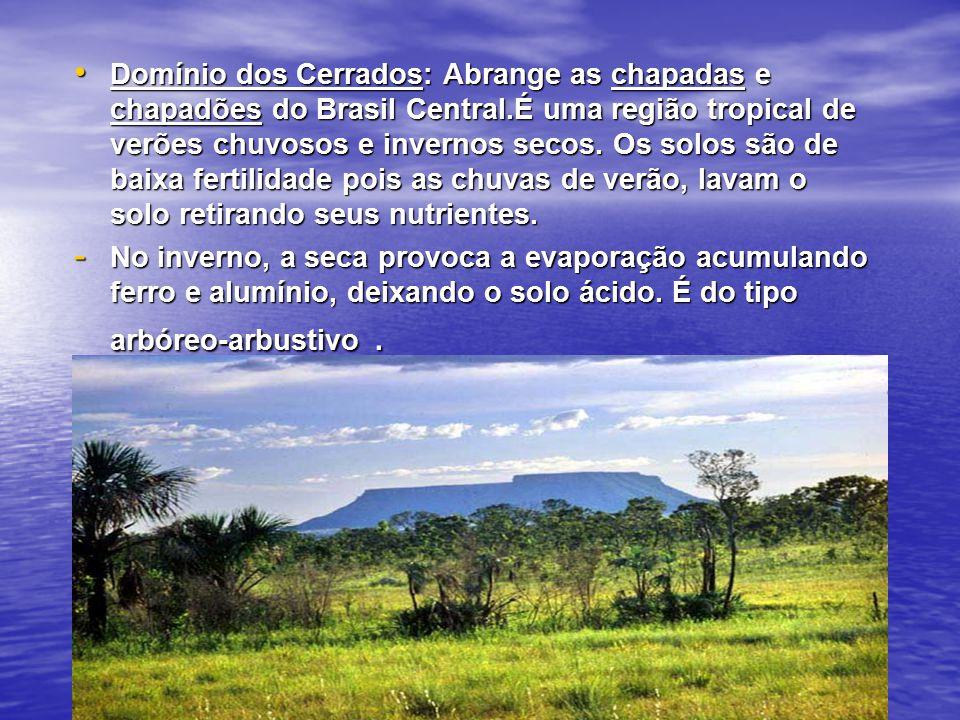 Domínio dos Cerrados: Abrange as chapadas e chapadões do Brasil Central.É uma região tropical de verões chuvosos e invernos secos. Os solos são de baixa fertilidade pois as chuvas de verão, lavam o solo retirando seus nutrientes.