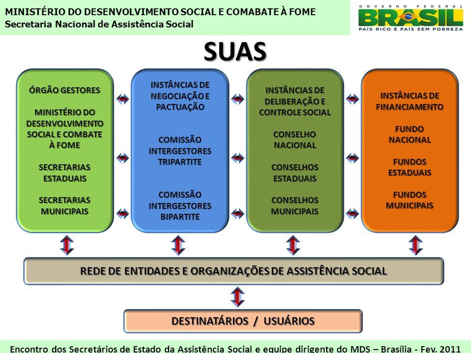 SUAS REDE DE ENTIDADES E ORGANIZAÇÕES DE ASSISTÊNCIA SOCIAL