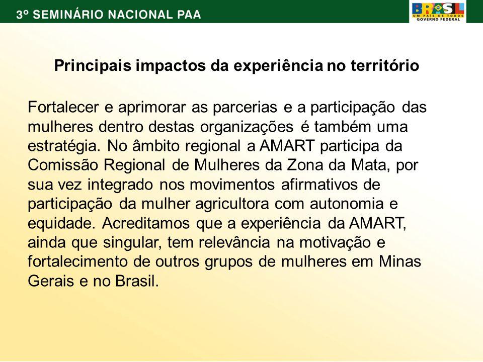 Principais impactos da experiência no território