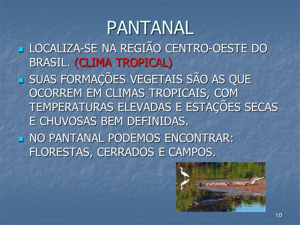 PANTANAL LOCALIZA-SE NA REGIÃO CENTRO-OESTE DO BRASIL. (CLIMA TROPICAL)