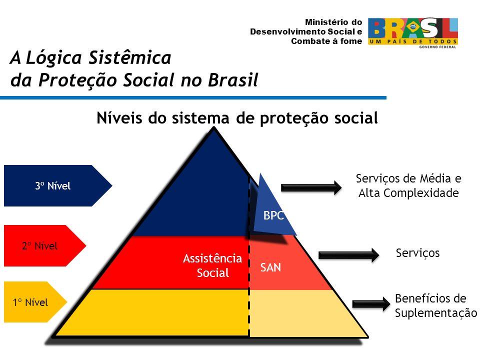 Níveis do sistema de proteção social