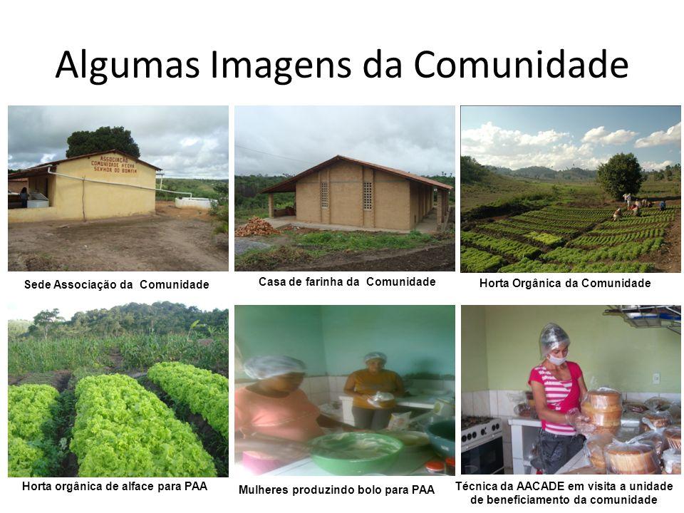 Algumas Imagens da Comunidade