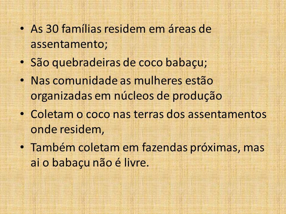As 30 famílias residem em áreas de assentamento;