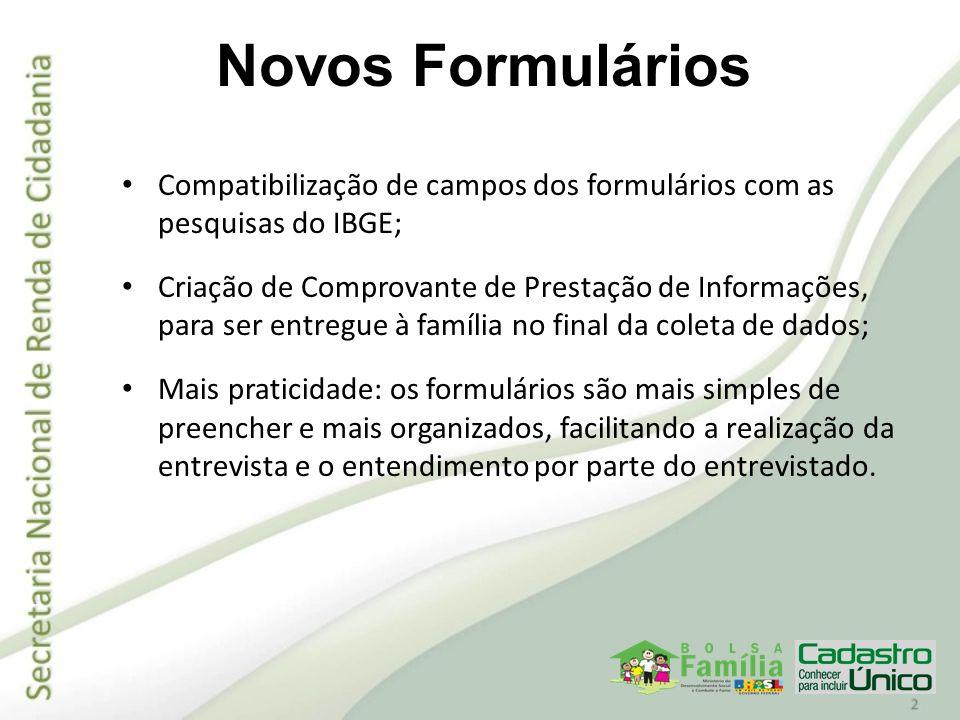 Novos Formulários Compatibilização de campos dos formulários com as pesquisas do IBGE;