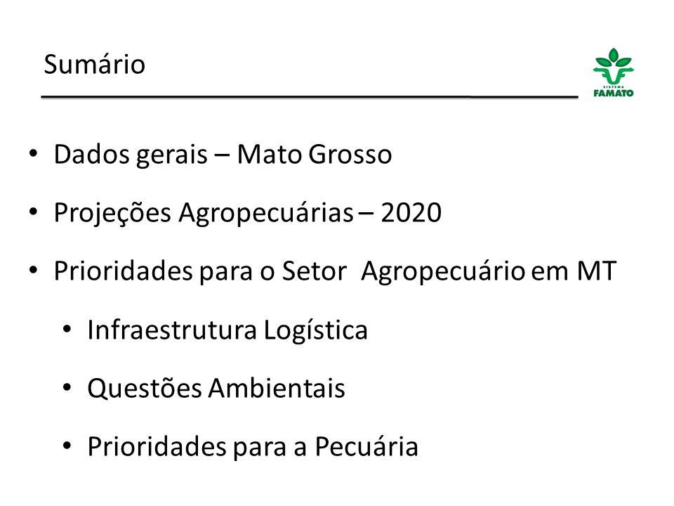 Sumário Dados gerais – Mato Grosso. Projeções Agropecuárias – 2020. Prioridades para o Setor Agropecuário em MT.