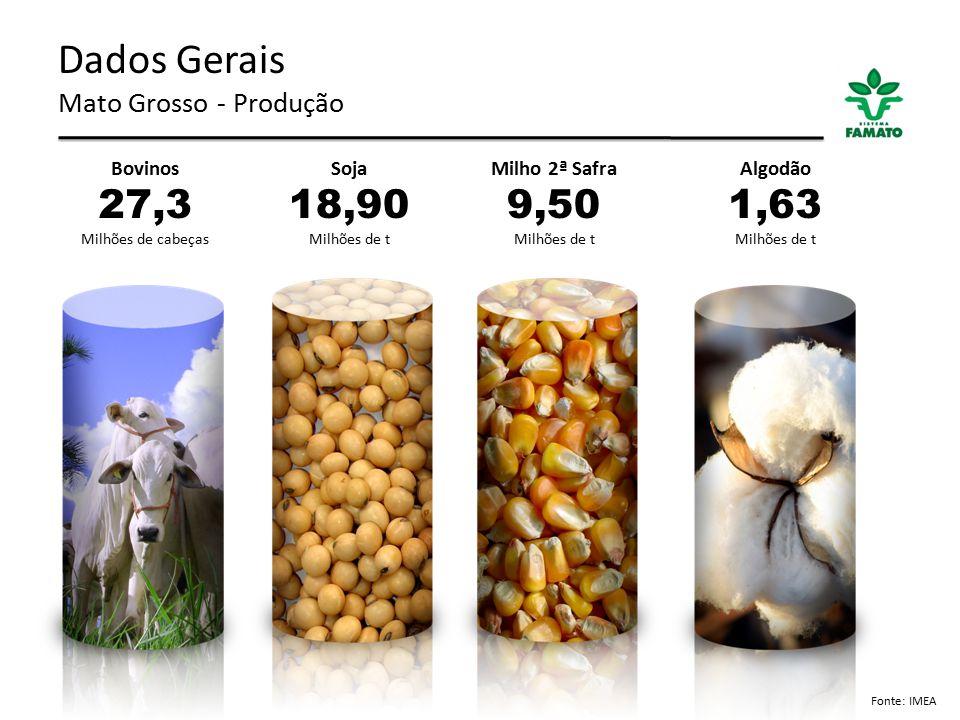 Dados Gerais Mato Grosso - Produção