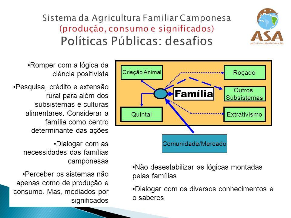 Sistema da Agricultura Familiar Camponesa (produção, consumo e significados) Políticas Públicas: desafios