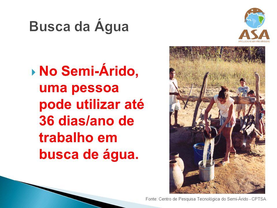 Busca da ÁguaNo Semi-Árido, uma pessoa pode utilizar até 36 dias/ano de trabalho em busca de água.