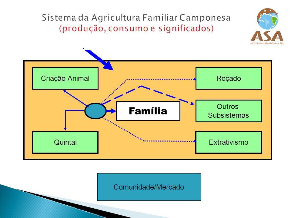 Sistema da Agricultura Familiar Camponesa (produção, consumo e significados) Fluxo Hídrico