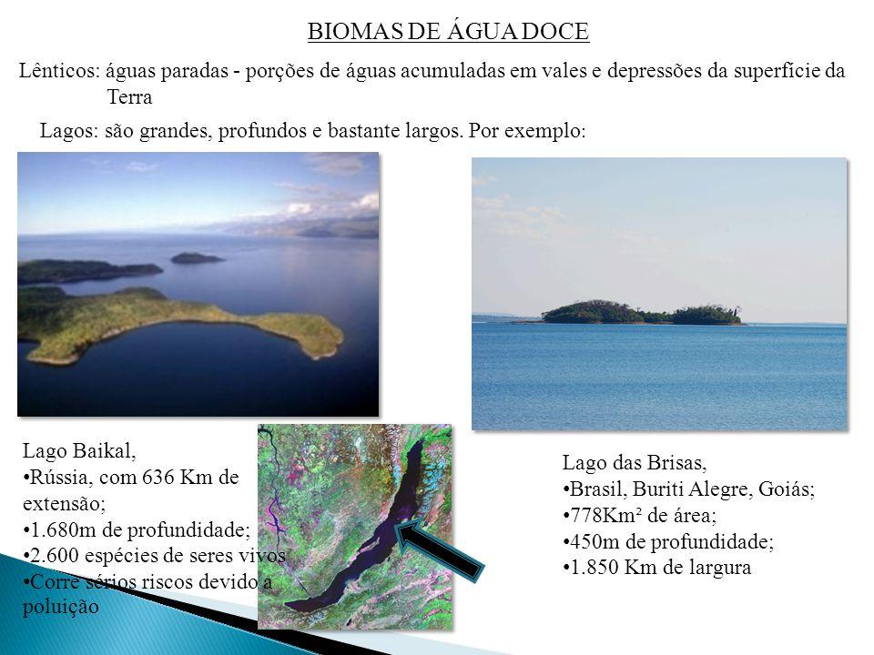 BIOMAS DE ÁGUA DOCE Lênticos: águas paradas - porções de águas acumuladas em vales e depressões da superfície da Terra.