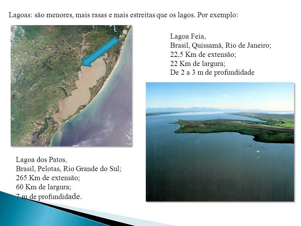 Lagoas: são menores, mais rasas e mais estreitas que os lagos