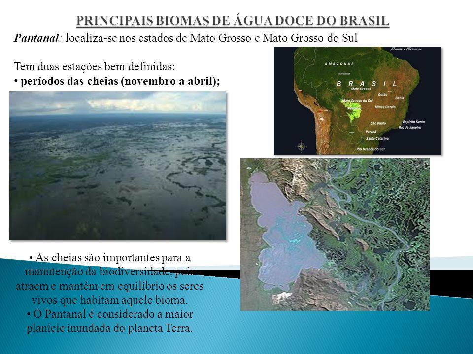 PRINCIPAIS BIOMAS DE ÁGUA DOCE DO BRASIL
