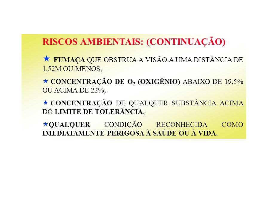 RISCOS AMBIENTAIS: (CONTINUAÇÃO)
