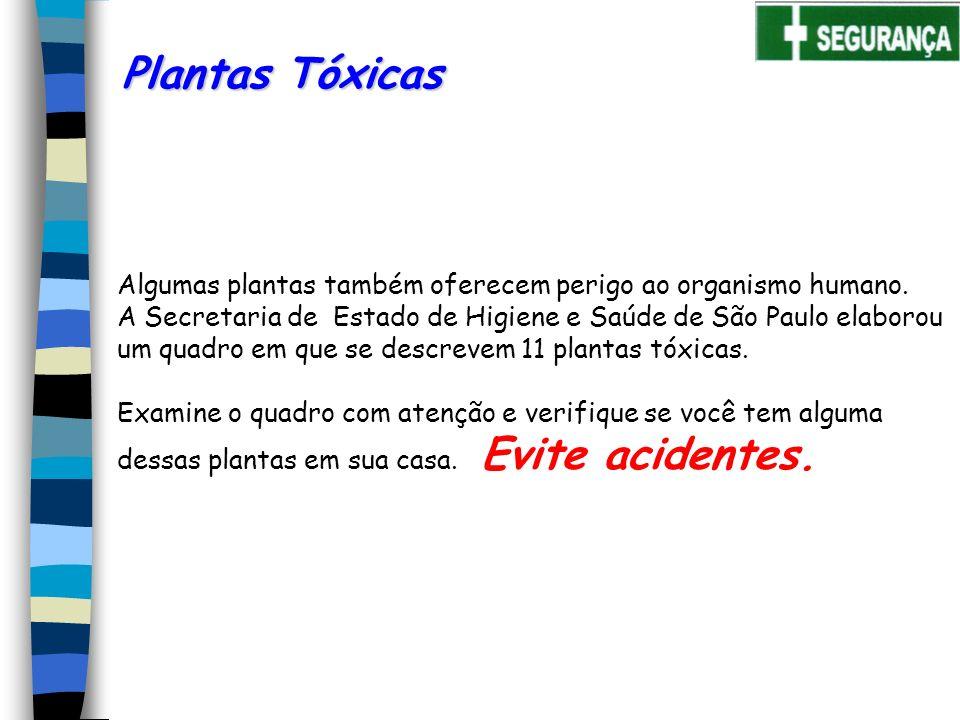 Plantas Tóxicas Algumas plantas também oferecem perigo ao organismo humano. A Secretaria de Estado de Higiene e Saúde de São Paulo elaborou.