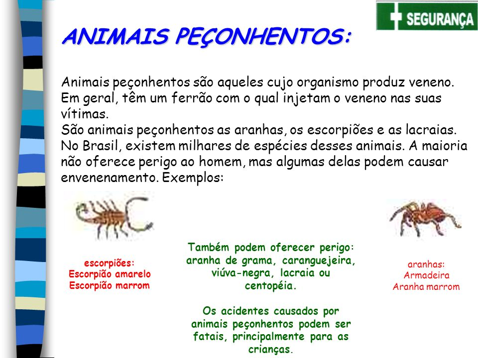 ANIMAIS PEÇONHENTOS: