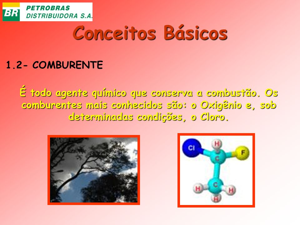 Conceitos Básicos 1.2- COMBURENTE