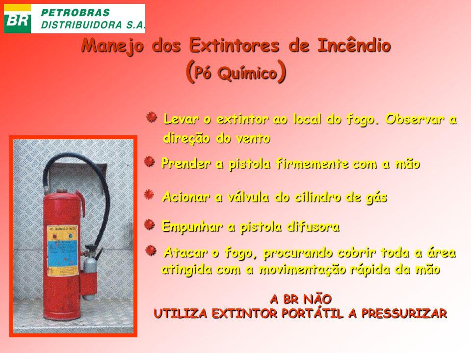 (Pó Químico) Manejo dos Extintores de Incêndio
