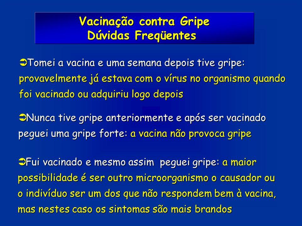 Vacinação contra Gripe