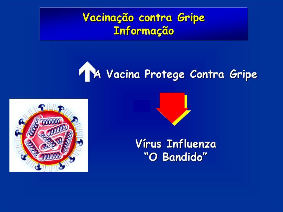 Vacinação contra Gripe A Vacina Protege Contra Gripe