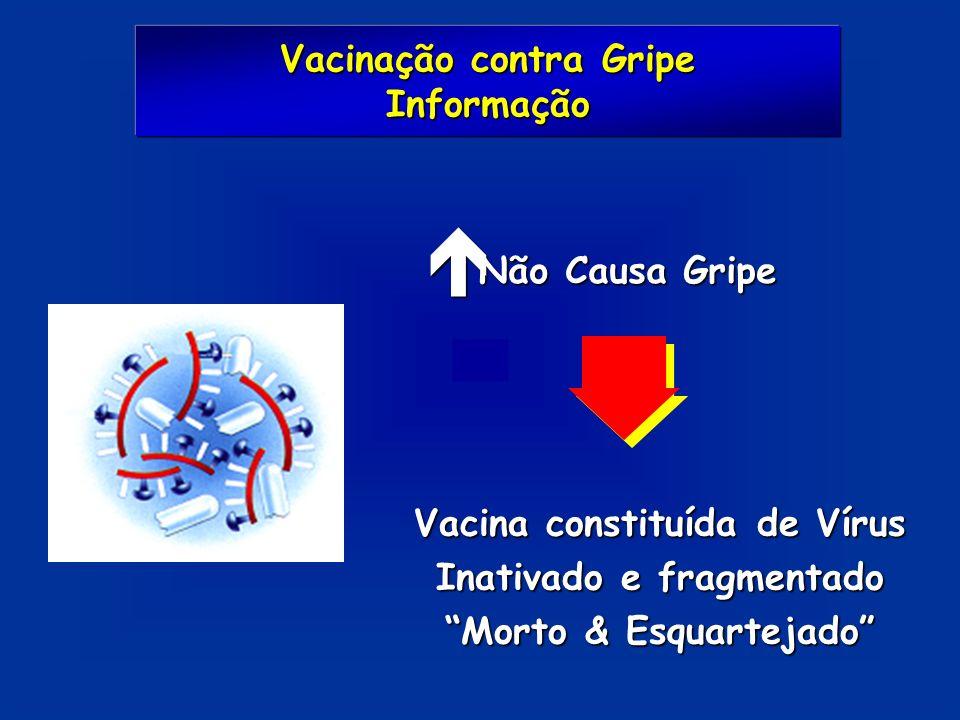 Vacinação contra Gripe Informação