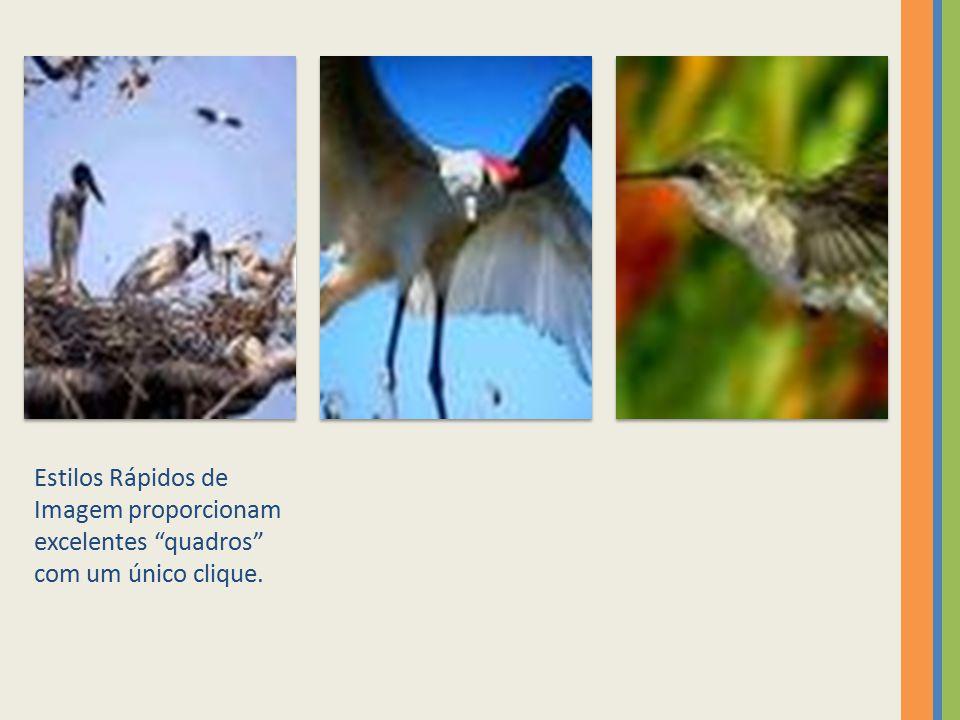Estilos Rápidos de Imagem proporcionam excelentes quadros com um único clique.