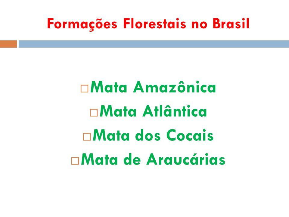 Formações Florestais no Brasil