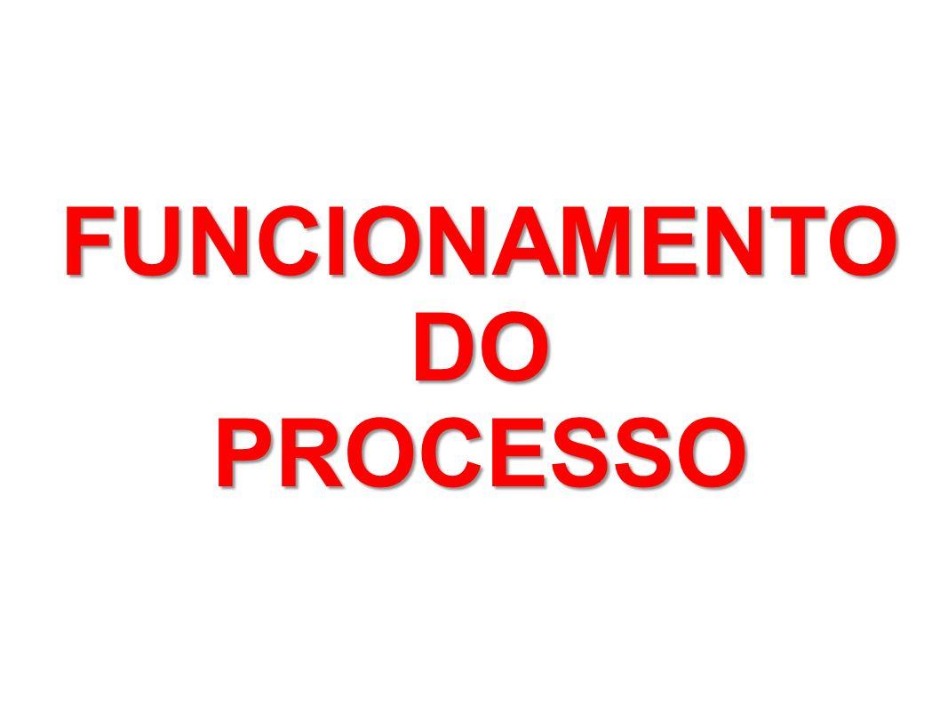 FUNCIONAMENTO DO PROCESSO
