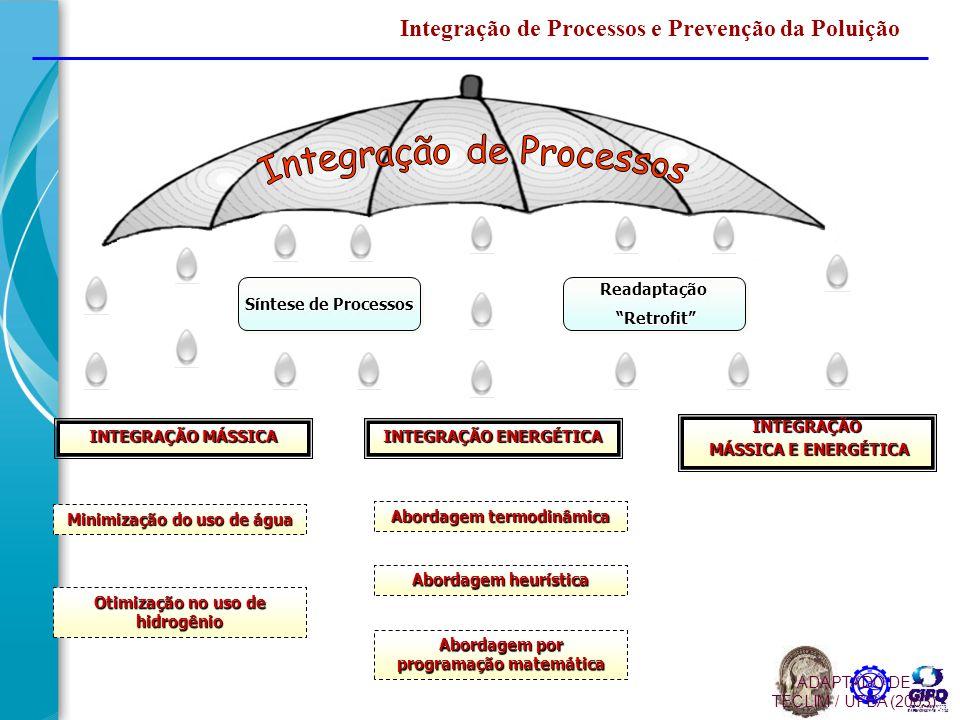 Integração de Processos e Prevenção da Poluição