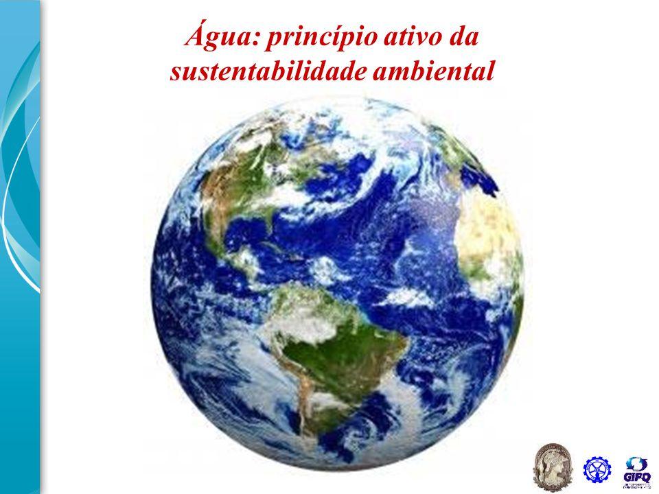 Água: princípio ativo da sustentabilidade ambiental