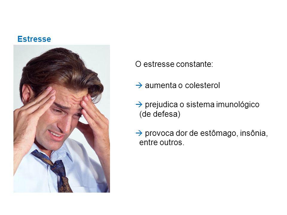 Estresse O estresse constante:  aumenta o colesterol.  prejudica o sistema imunológico (de defesa)