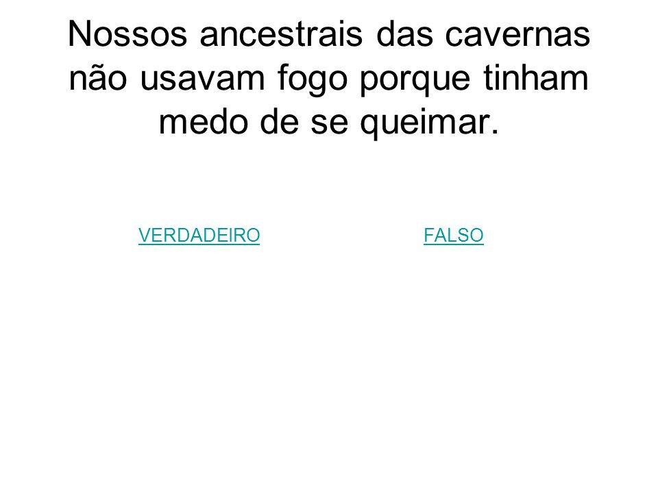 Nossos ancestrais das cavernas não usavam fogo porque tinham medo de se queimar.