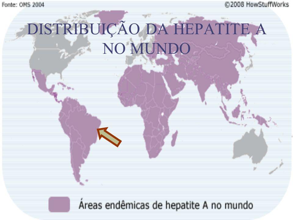 DISTRIBUIÇÃO DA HEPATITE A NO MUNDO