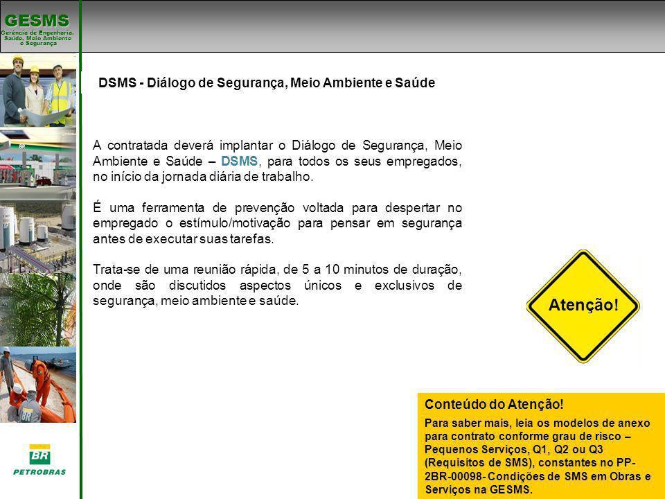Padrões de SMS DSMS - Diálogo de Segurança, Meio Ambiente e Saúde. Padrões de SMS.