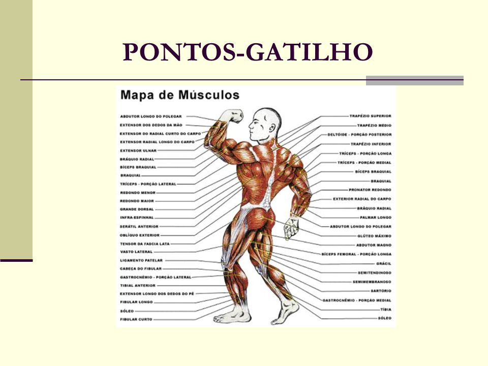 PONTOS-GATILHO