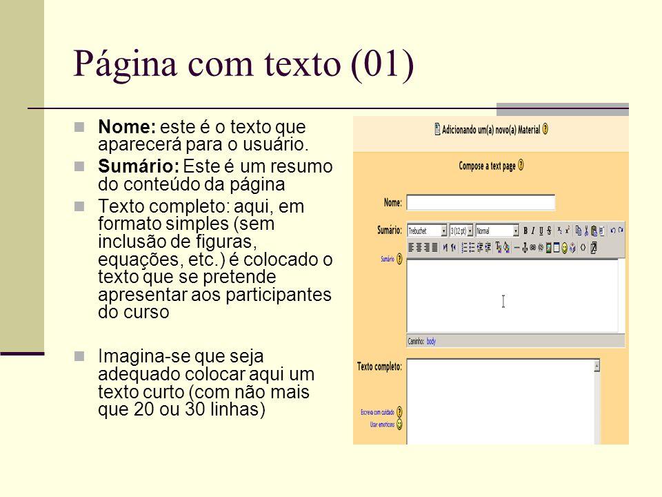 Página com texto (01) Nome: este é o texto que aparecerá para o usuário. Sumário: Este é um resumo do conteúdo da página.