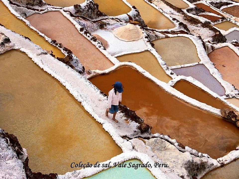 Coleção de sal, Vale Sagrado, Peru.