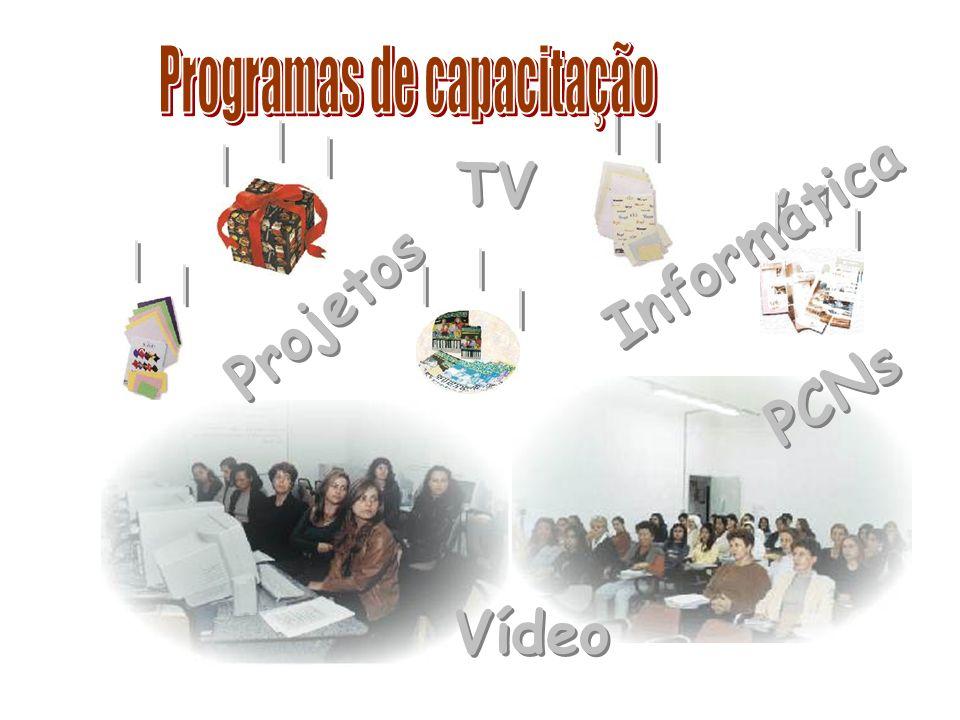 Programas de capacitação