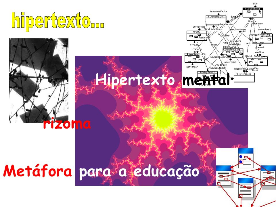 Metáfora para a educação