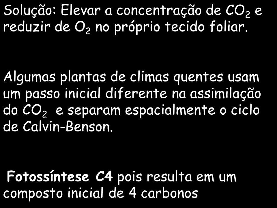 Solução: Elevar a concentração de CO2 e reduzir de O2 no próprio tecido foliar.